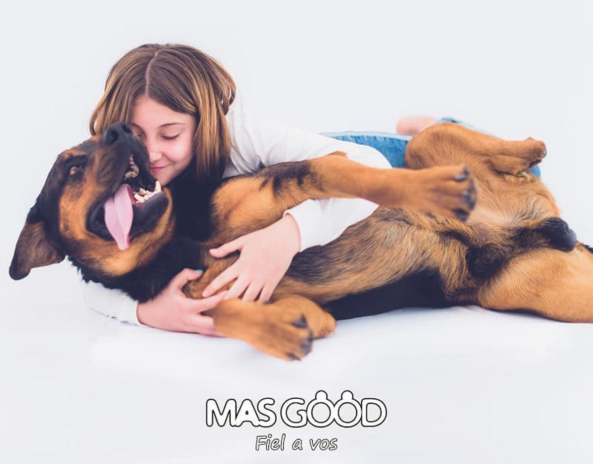Los consejos de MasGood para reforzar el vínculo con tu mascota.
